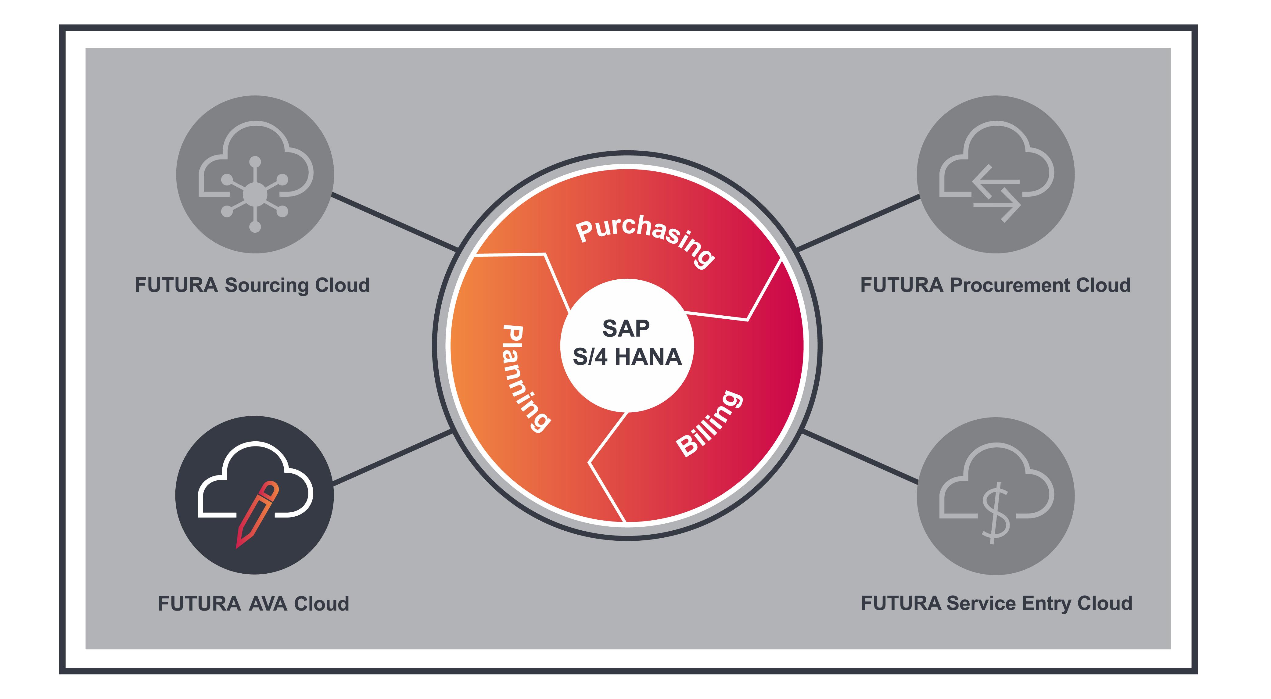 FUTURA Service Entry cloud